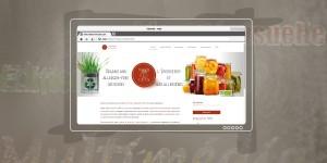 SITE :  Choix et traitement des visuels & Iconographie
